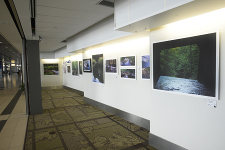 Photo Art Exhibition