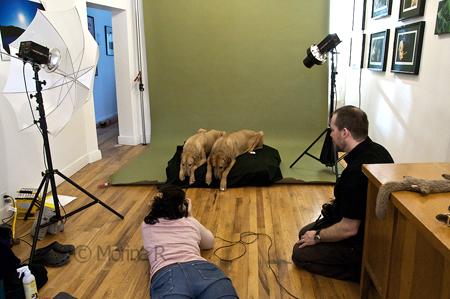 Ottawa Photo Studio Course