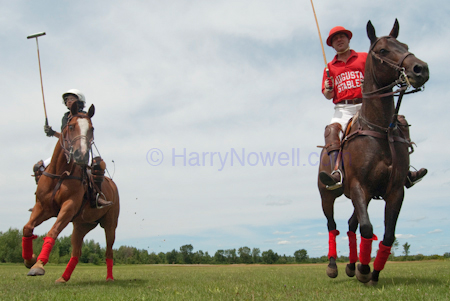 Polo photography