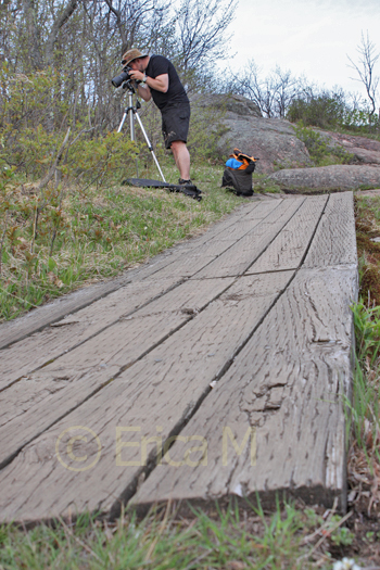 Pro photography course - Ottawa