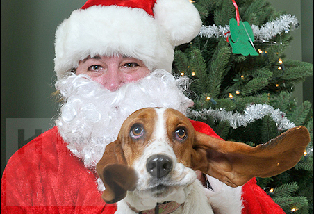 SPCA and Santa photo on the dog blog