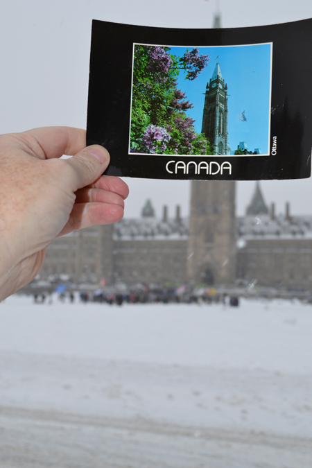 Mayor Jim Watson's photo in the photo contest!