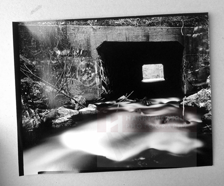 Large format one of a kind photographs