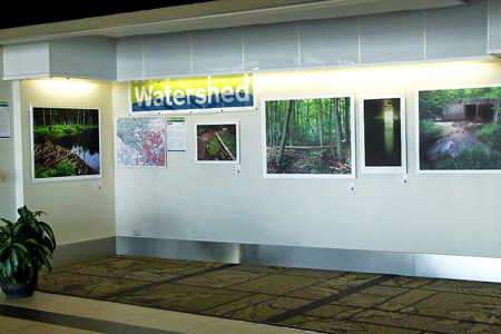 Watershed Art