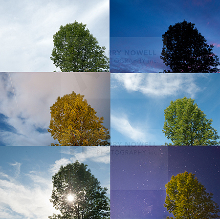 photo exposure variations